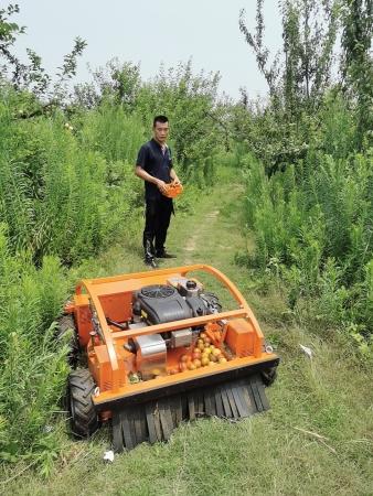 果园用上割草新利器